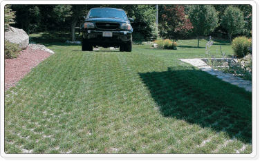 grass block pavers